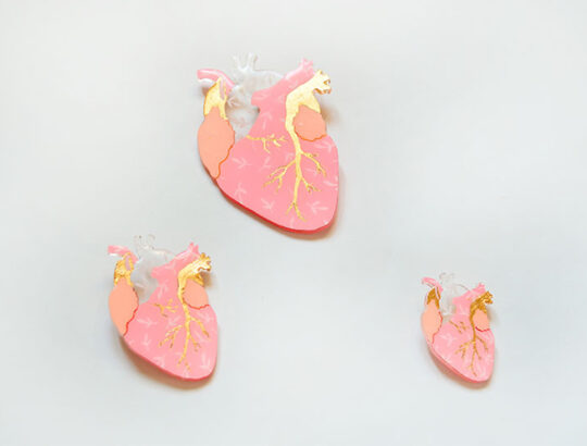 ioana petre warm heart brooch