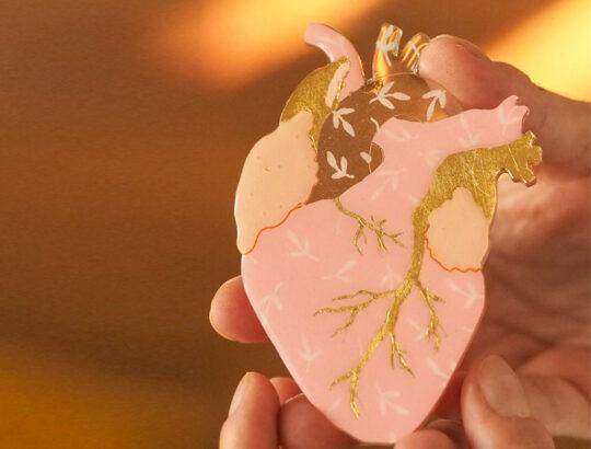 ioana petre warm heart brosa