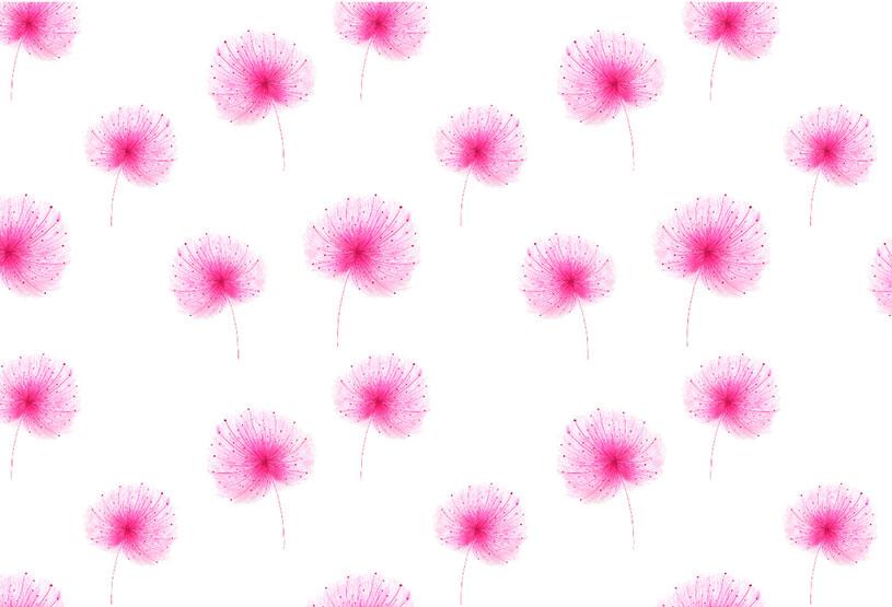 ioana petre dandelion pattern